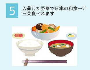 5.入荷した野菜で日本の和食一汁三彩食べれます