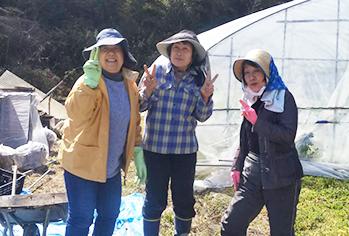 柴田農園-奈良高山